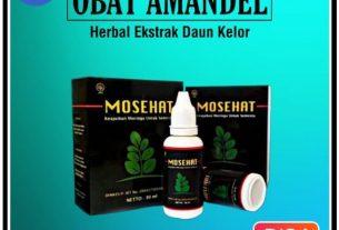 Obat Amandel Mosehat